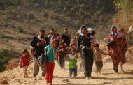NY: Kurdistan baştirîn cih bo koçberên Sûriyê ye