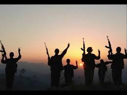 PKK û Hêza wê ya çekdar divê li Başûrê Kurdistanê qedexe bibe…