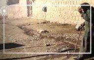 Hawara Pîrejina Efrînî û 8ê Adarê…