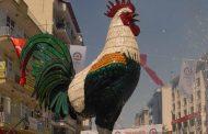 Kürt Mahallesine Dalan Horoz...