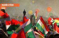 Rawîn Stêrk: 'Dünyanın obruğu'nda demokrasinin çarkı gıcırdıyor