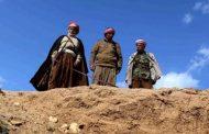 Li Şingalê komgorekî Kurdên Êzdî hate dîtin
