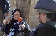 Pîrejeneke Kurd: Em ti car dest ji axa xwe bernadin