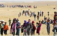 Piştî Êrîşa DAIŞê Rewşa Kurdên Êzidî