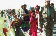 Komkûjiya Kurdên Feylî / Kuştin û Mirina Kurdan Dom Dike…