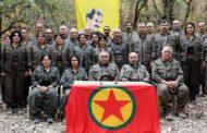 PKK Kürd Özgürlük Harekatı'nın Önünde Bir Bela!