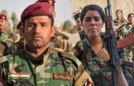 Berdevkê Hevpeymaniya Navdewletî: Kurd hevkarê jêhatî û pêbawer in