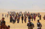 NY: Tawanên DAIŞê yên li dijî Kurdên Êzidîjenosîd e